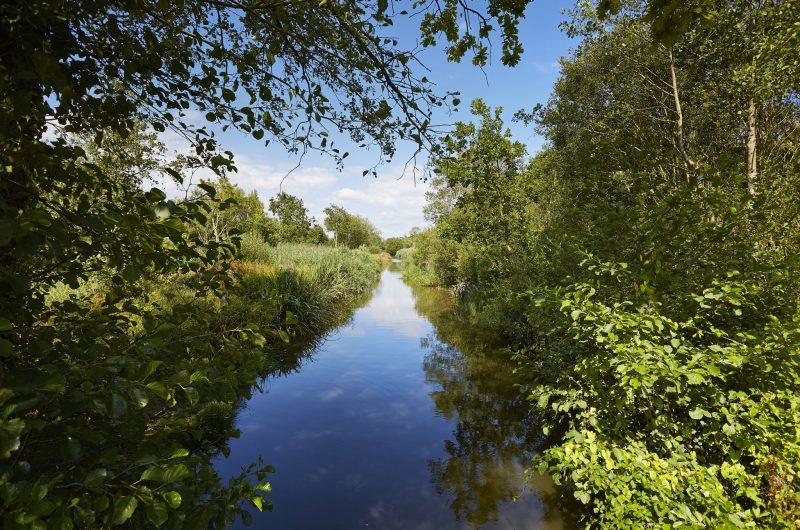 Marais de Mousterlin – Fouesnant