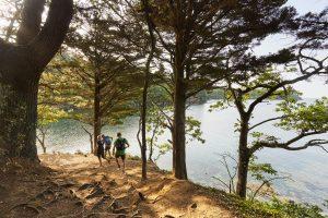 Balade à pied sur l'Anse Saint-Laurent à La Forêt-Fouesnant