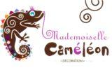Mademoiselle Caméléon