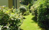 Joel-Barbotin-Jardin