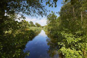 Voie d'eau dans le marais de Mousterlin