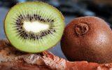 Verger-de-Kiwi