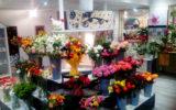 les-fleurs-et-vous-la-foret-fouesnant